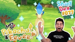 THE BEST SHINY!? SHINY PONYTA REACTION in POKEMON LETS GO PIKACHU AND EEVEE!