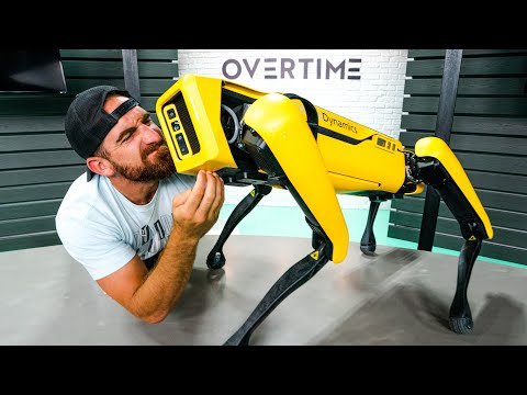 Real Life Robot Dog | OT 17
