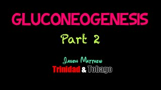 Gluconeogenesis Part 2