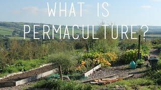 Permaculture, Self Sufficiency & Vegan Fertilisers