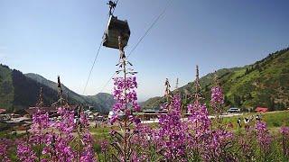 Almaty, le joyau du Kazakhstan - focus