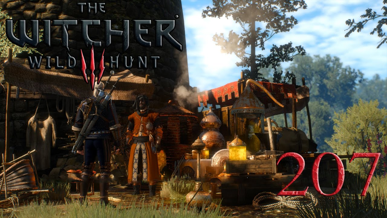 Witcher 3 Geld Verdienen