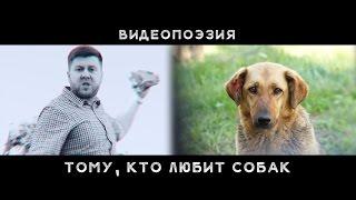 Тому, кто любит собак |Видеопоэзия |Социальный ролик