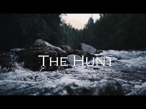 The Hunt. Maine Hunting