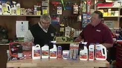 2016 The Cajun Contractor talks about Bonide Mosquito Control