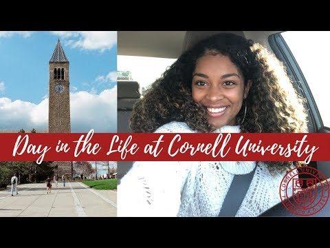 Day in the Life of a Cornell University Student