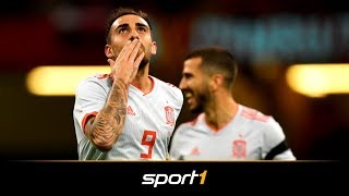 BVB beflügelt Alcacer im Nationalteam - Bleibt er in Dortmund? | SPORT1 - TRANSFERMARKT