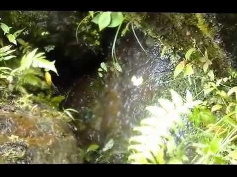 Lost City Ecuador - Double Stone Layer Megalith