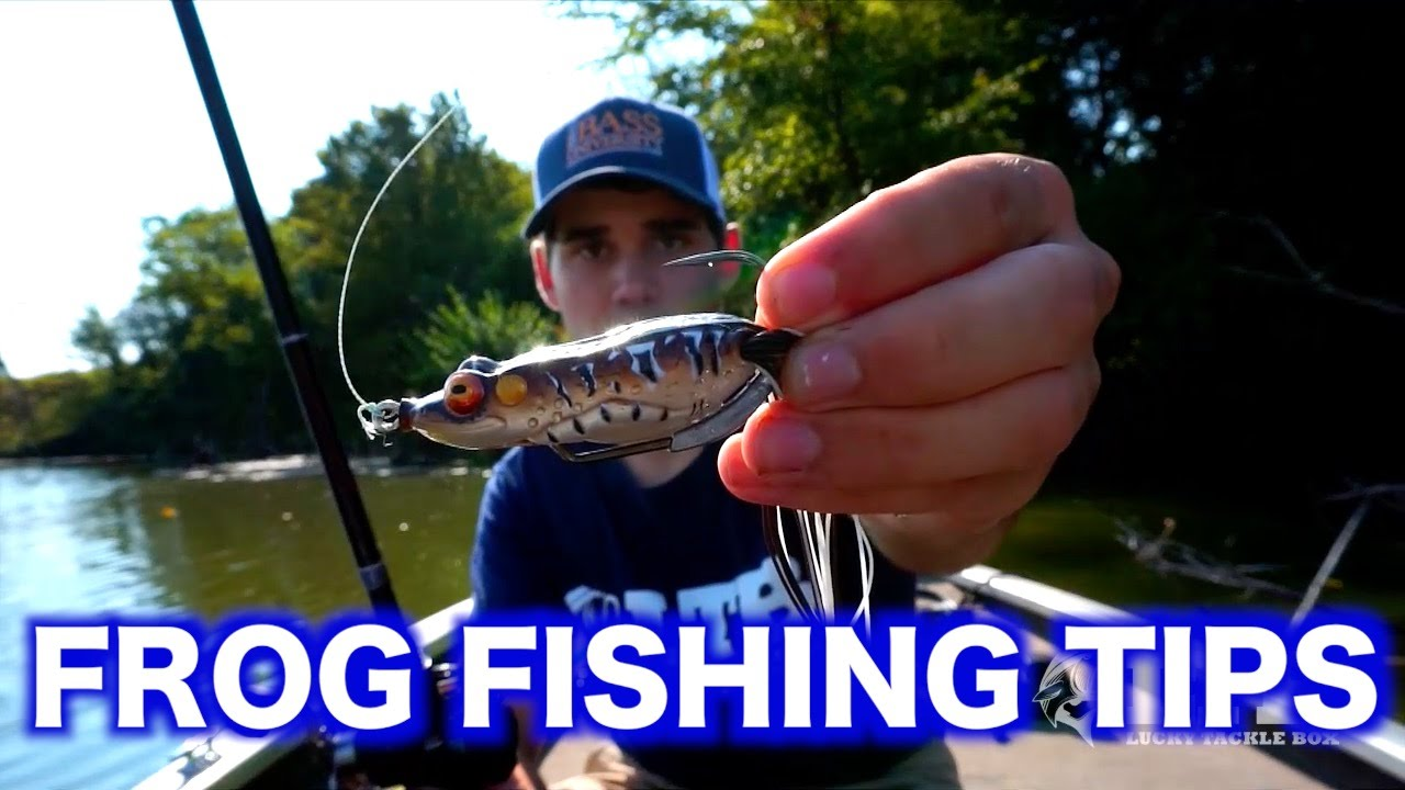 Topwater frog fishing tips bass fishing techniques youtube for Youtube bass fishing