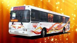 Party Bus Mojo в Иваново — автобус для свадеб,на 30 чел. + ведущий.