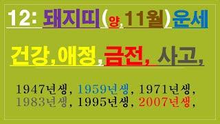 돼지띠,11월운세,건강운,금전운,애정운,사고수,  010/4258/8864