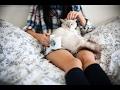 Котик смотрит на себя в телевизоре (Прикол)