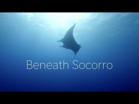 beneath-socorro---searching-for-giant-manta-rays---vol-1