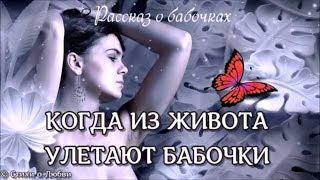 Когда из живота улетают бабочки... Рассказ о бабочках