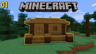 Minecraft Solo Survival! - Ep 1 - FIRST STARTER HOME! (Minecraft 1.15 Let's Play)