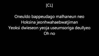 2NE1 - I don't care /Reggae version/ (lyrics)