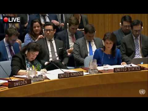 Russia to Western countries in UN SC: Youre constantly tempted by Neocolonialism