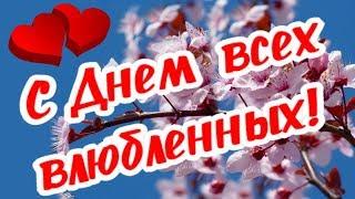 С Днем святого Валентина! Тебе валентинка!