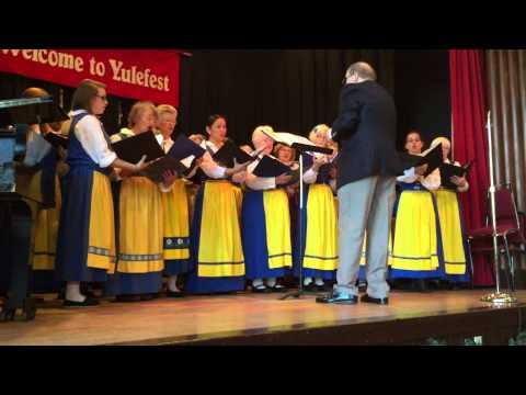 2014-11-23 Seattle Swedish Women's Chorus - Yulefest - O Yule Full of Gladness