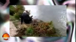 Смешное видео Приколы на рыбалке ВЫПУСК #31(Самые смешные курьезы, приколи, и глупости которые могут случится с людьми, животными ,смотрите на нашем..., 2015-04-16T20:57:06.000Z)
