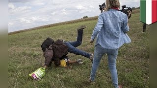 Hungarian camerawoman who kicked, tripped refugees plans to sue one of them and Facebook - TomoNews