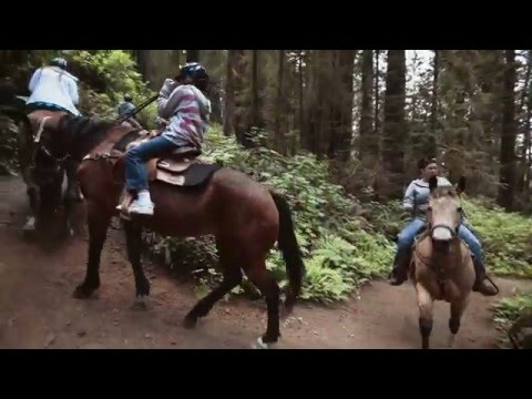 Redwood Forest Horseback Tours