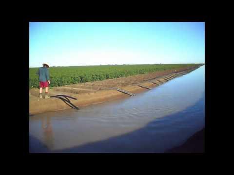 Australia Cotton Farming Siphon Flood Irrigation
