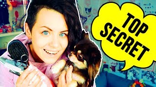 видео Как ухаживать за собакой?