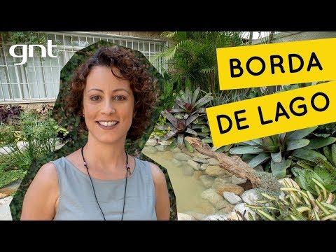 MAROC TÉLÉCHARGER AL GRATUIT BORDA