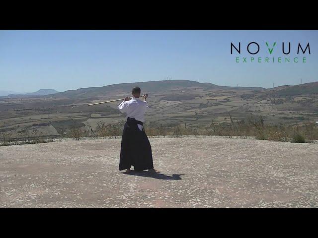 03 Ushiro Tsuki - Aikido Novum Experience- Jo Suburi Nijuppon -Tsuki Gohon - 後ろ突き-合気道 杖素振り20本 -突き 5本