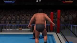 All Star Pro-Wrestling  ~ PS2 PlayStation 2