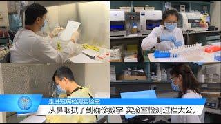 狮城有约 | 疫情专题:从采取样本到确诊病例 实验室检测过程大公开