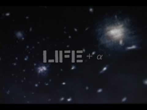 LIFE+α (osaka daggers video)