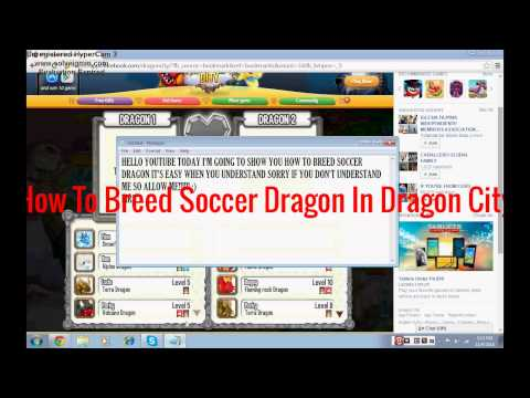 How To Breed A Soccer Dragon In Dragon City