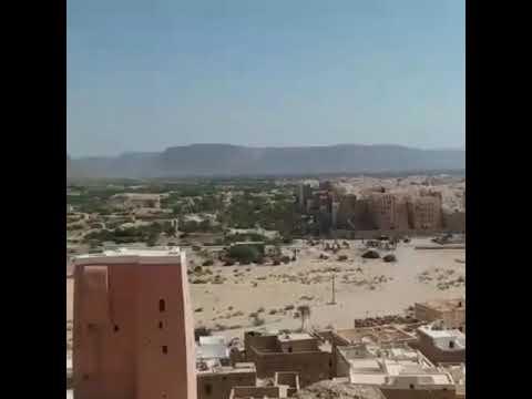 Socotra Tours  Easy travel to Yemen