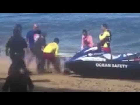 tourist-killed-in-apparent-shark-attack-in-maui-hawaii