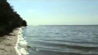 Отдых в Очакове: Кинбурнская коса(http://santa-o.com.ua/santa-ochakov/santa-price.html - качественный отдых в Очакове без посредников, пансионат