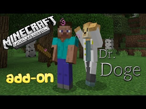 My Own Personal Doctor!!! | Doctor Doge Add-On | Minecraft Pocket Edition