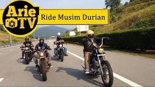 Arie Ride TV :: Ride Durian Bobber Chopper Custom Motorcycle