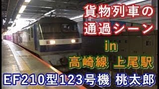 EF210型123号機 桃太郎 コンテナ貨物 上尾駅を通過する 2019/10/06