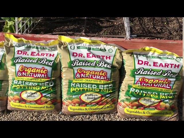 Planting My Fall Veg Garden!