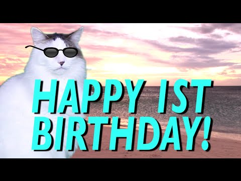 HAPPY 1st BIRTHDAY!  EPIC CAT Happy Birthday Song