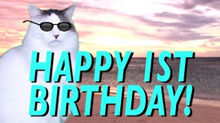 HAPPY 1st BIRTHDAY! - EPIC CAT Happy Birthday Song