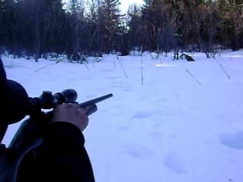Angus SutherlandMe  Target Practice