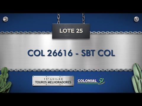 LOTE 25   COL 26616