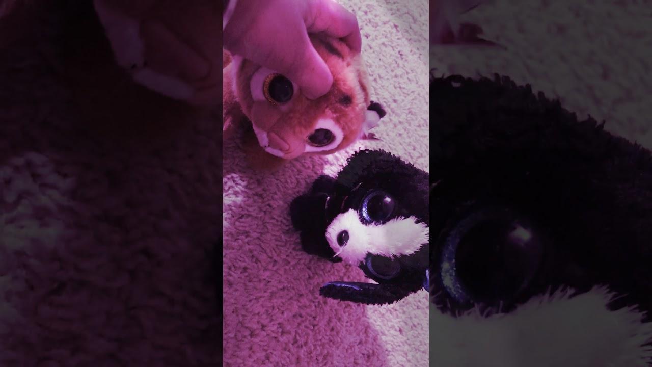 57d439b95bb Timber Beanie Boo Music Video! - YouTube