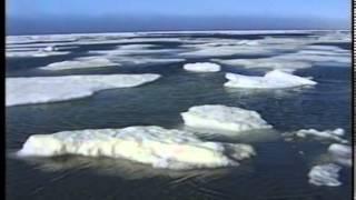 Тайна Карского моря