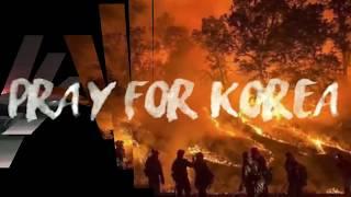 Gambar cover Kebakaran Hebat Terjadi di Korea Selatan 5 April 2019