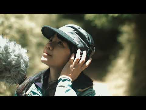 聽見家的聲音 塔塔加之歌 MV 4K 導演版