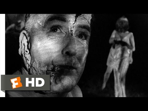 Night of the Living Dead (8/10) Movie CLIP - Feast of Flesh